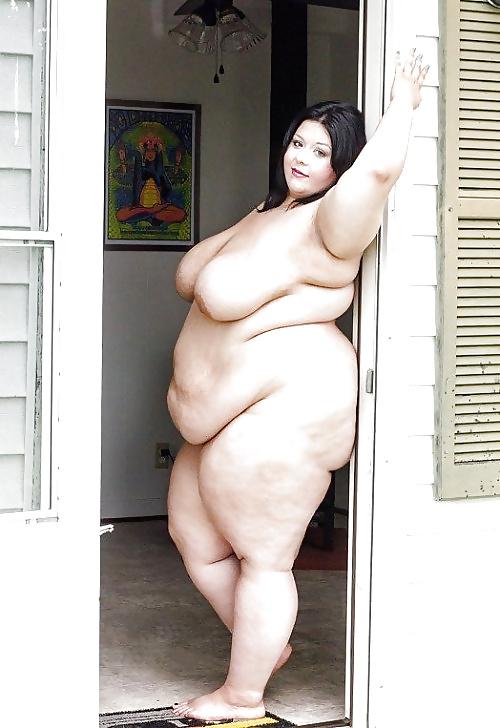 Gratis bilder av fet och äldre tikar