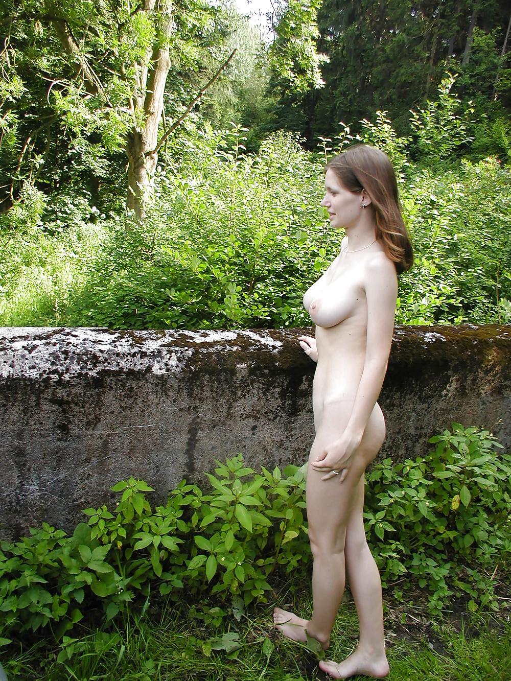 Naturbrun i fria bilder