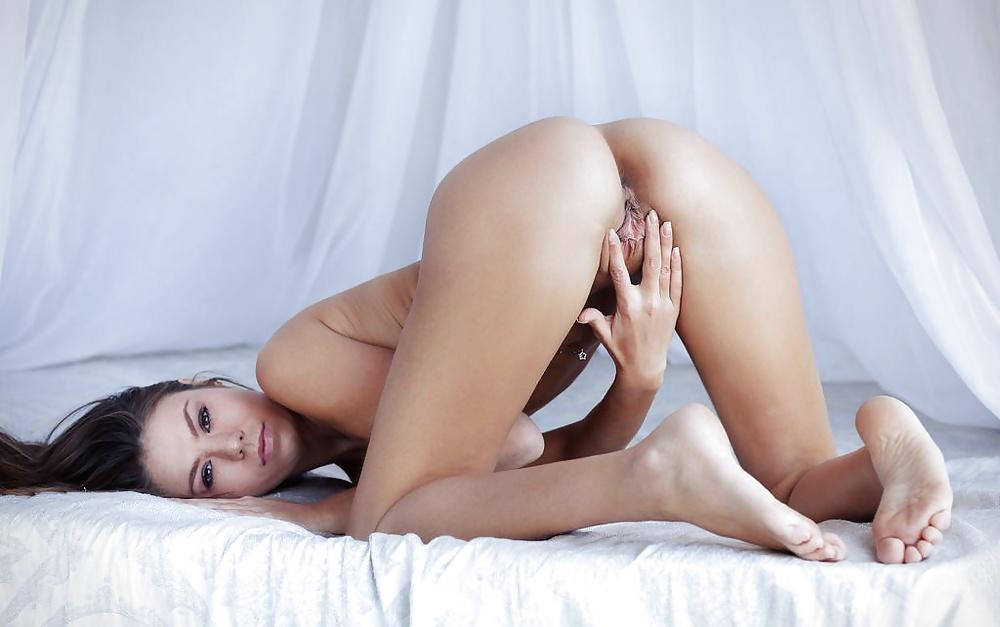 Exotiska tikar i klara bilder